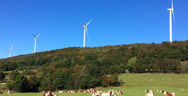 Parc éolien de Lomont-Crosey Vellerot