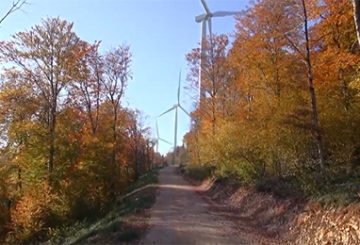 Parc éolien en forêt à l'automne
