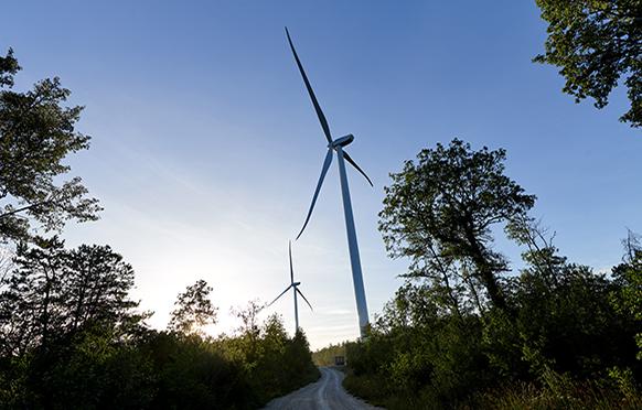 Parc éolien en forêt de Vélocita Énergies