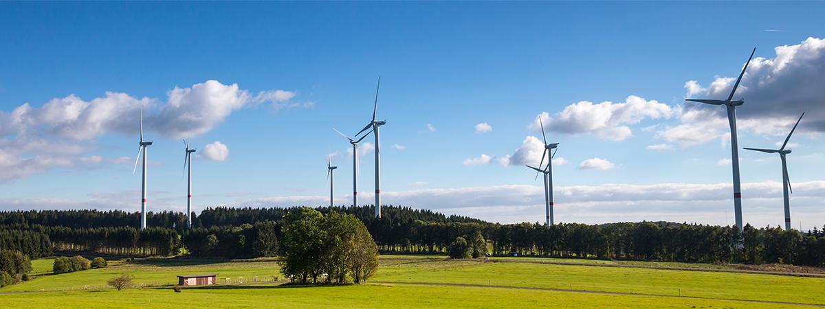 energie-naturelle-parc-eolien-enrgie-eolienne-velocita